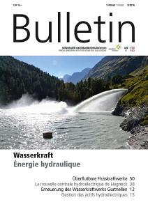 VSE-Bulletin